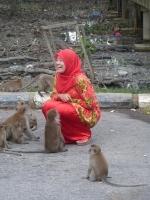 nicht nur ich hatte Freude an den Affen...